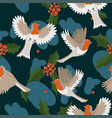 robin birds seamless pattern with berries vector image