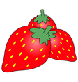 stawberry cartoon vector image vector image
