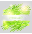 watercolor bamboo banner with green leaves vector image vector image