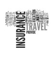 why buy travel insurance text word cloud concept vector image vector image