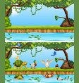 animals in nature template vector image