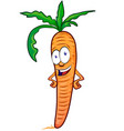 carrot mascot cartoon isolated on white background vector image vector image
