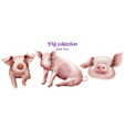 cute pigs icon set in watercolor pig new vector image vector image