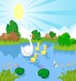 Duck family cartoon swimming vector image vector image