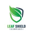green leaf shield logo design vector image vector image