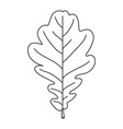 line art black and white oak leaf vector image