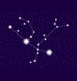 andromeda constellation starry night sky vector image