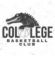 basketball college club badge concept for vector image vector image