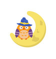 cartoon owl sitting on the moon cartoon owl vector image vector image