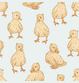 ducklings pattern vector image vector image