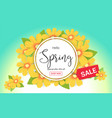 hello spring season time sales season banner vector image vector image