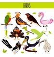 Set of Cute cartoon Animals birds living in vector image vector image