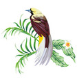 tropical bird with plant print wallpaper vector image vector image