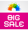 Big Sale Paper Title on Pink Background with vector image vector image