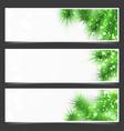 Bright shimmering green fir tree branches flyer