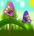Butterflies on a blade of grass vector image vector image