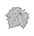 grape leaf gray symbol or vector image vector image