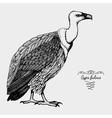 hand drawn realistic bird sketch graphic vector image vector image