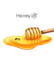 Honey Puddle With Stick vector image vector image