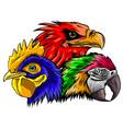 parrot head logo icon art vector image