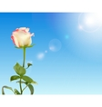 Beautiful Rose Against Shiny Sky vector image