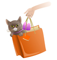 Cat in a present package vector image vector image