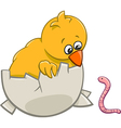 chick with warm cartoon vector image vector image