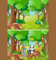 forest scenes with wild animals vector image vector image