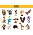 Set of Cute cartoon Animals mammals living in vector image vector image