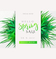 spring promotion banner vector image