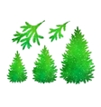 Spruce trees and branches collection vector image vector image