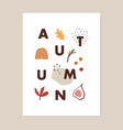 trendy colorful fall greeting card invitation vector image vector image