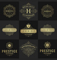 vintage logos and monograms set elegant flourishes vector image