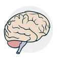 cartoon brain icon vector image vector image