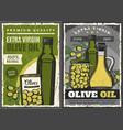 olive oil bottles pickled green fruits can or jar vector image vector image