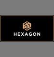 pd hexagon logo design inspiration vector image vector image