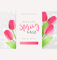 spring promotion banner vector image vector image