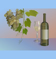wine background with bottle and grapes vector image vector image