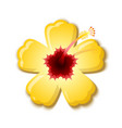 yellow hibiscus that is national flower hawaii vector image vector image