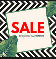 sale tropical summer poster on ornamental zigzag vector image