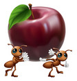 ants carrying a big apple vector image vector image