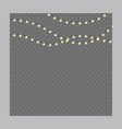 christmas lights on rope isolated on a vector image vector image