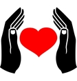 Hands of man and the heart vector image