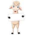 happy lamb cartoon holding blank sign vector image vector image