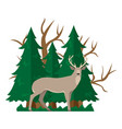 isolated with a deer in a forest vector image vector image
