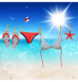 sweemsuit on seascape vector image vector image