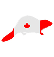 Canadian Beaver vector image