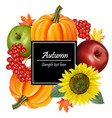 autumn harvest realistic sunflowerpumpkin vector image vector image