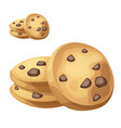 choc chip cookies cartoon vector image vector image