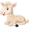 cute lamb cartoon sitting isolated vector image